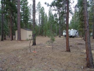 3100 Wagon Trail Road, La Pine, OR 97739 (MLS #201604160) :: Birtola Garmyn High Desert Realty