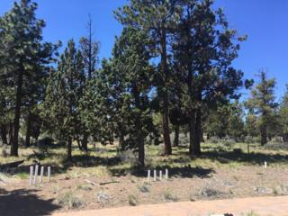 1481 NW Puccoon Court, Bend, OR 97701 (MLS #201604430) :: Birtola Garmyn High Desert Realty