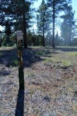 17057 Golden Stone Drive Lot 100, Sisters, OR 97759 (MLS #201604524) :: Birtola Garmyn High Desert Realty
