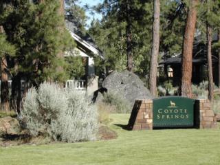 905 E Coyote Springs, Sisters, OR 97759 (MLS #201605209) :: Birtola Garmyn High Desert Realty