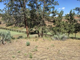 681 NE Stringline Court, Prineville, OR 97754 (MLS #201605213) :: Birtola Garmyn High Desert Realty