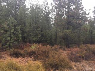 0 Hackett Drive, La Pine, OR 97739 (MLS #201610240) :: Birtola Garmyn High Desert Realty