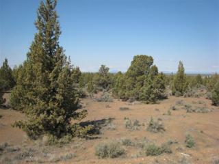 6703 SW Joshua Court, Powell Butte, OR 97753 (MLS #201610776) :: Birtola Garmyn High Desert Realty