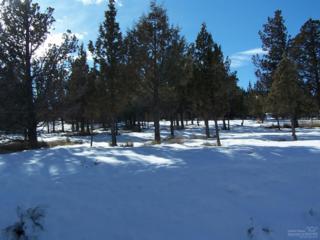 Prineville, OR 97754 :: Birtola Garmyn High Desert Realty