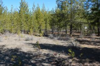 16102 Pine Drop, La Pine, OR 97739 (MLS #201700926) :: Birtola Garmyn High Desert Realty