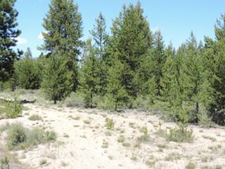 10 Mabel Drive Lot, La Pine, OR 97739 (MLS #201701056) :: Fred Real Estate Group of Central Oregon