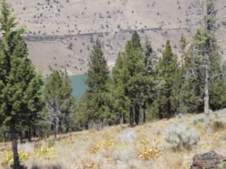 12190 SW This Way Lane, Culver, OR 97734 (MLS #201701097) :: Birtola Garmyn High Desert Realty