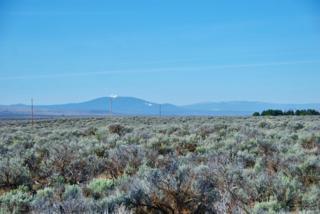 0 Pettus Lake Lane, Christmas Valley, OR 97641 (MLS #201701179) :: Birtola Garmyn High Desert Realty