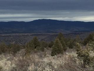 19274 SE Valley Road, Prineville, OR 97754 (MLS #201701430) :: Birtola Garmyn High Desert Realty