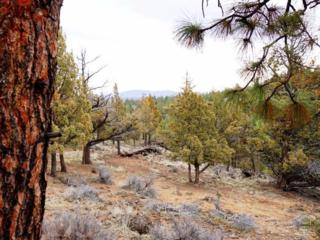 1470 NW Puccoon Court Lot 33, Bend, OR 97703 (MLS #201701726) :: Birtola Garmyn High Desert Realty