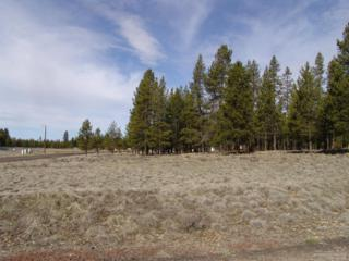11 Birchwood Drive, La Pine, OR 97739 (MLS #201702063) :: Birtola Garmyn High Desert Realty