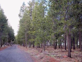 6600 Checkrein Lane Lot, La Pine, OR 97739 (MLS #201703215) :: Birtola Garmyn High Desert Realty