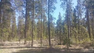 13 Hackamore Lane, La Pine, OR 97739 (MLS #201703301) :: Birtola Garmyn High Desert Realty