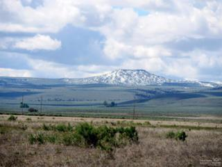0 Sunshine, Christmas Valley, OR 97641 (MLS #201704720) :: Fred Real Estate Group of Central Oregon