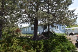 748 SE Akins Drive, Prineville, OR 97754 (MLS #201704767) :: Windermere Central Oregon Real Estate