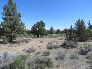 65876 Sage Canyon Court Lot 170, Bend, OR 97701 (MLS #201704779) :: Fred Real Estate Group of Central Oregon