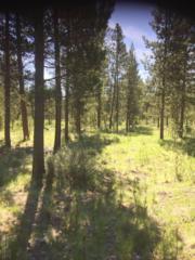 55408 Heierman Drive, Bend, OR 97707 (MLS #201704794) :: Windermere Central Oregon Real Estate