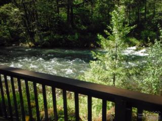 48905 Salt Creek Road, Oakridge, OR 97401 (MLS #201704978) :: Windermere Central Oregon Real Estate
