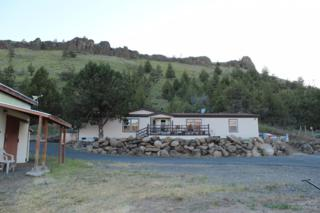 11318 SW Horny Hollow Trail, Crooked River, OR 97760 (MLS #201704981) :: Windermere Central Oregon Real Estate