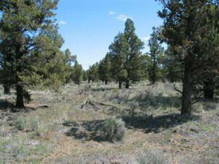 0 SW Frog Court Lot 22, Terrebonne, OR 97760 (MLS #2910929) :: Birtola Garmyn High Desert Realty