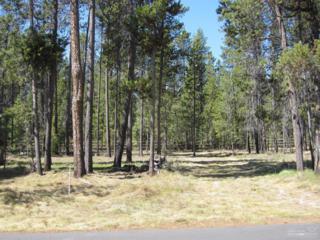 55671 Wagon Master Way, Bend, OR 97707 (MLS #201602386) :: Birtola Garmyn High Desert Realty