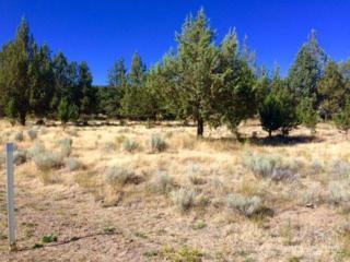 11102 NW Morrow Avenue, Prineville, OR 97754 (MLS #201607932) :: Birtola Garmyn High Desert Realty