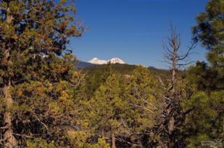 1703 NW Wild Rye Circle Lot 119, Bend, OR 97703 (MLS #201700020) :: Birtola Garmyn High Desert Realty