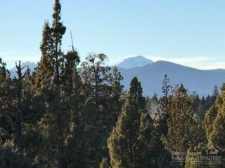 1697 NW Wild Rye, Bend, OR 97703 (MLS #201611210) :: Birtola Garmyn High Desert Realty