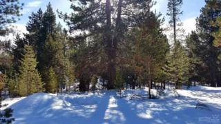 16755 Casper Drive, Bend, OR 97707 (MLS #201700347) :: Birtola Garmyn High Desert Realty