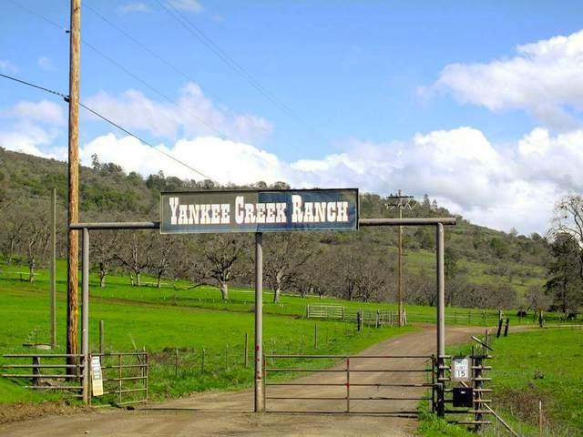 1260 Yankee Creek Road, Eagle Point, OR 97524 (MLS #102974955) :: Vianet Realty