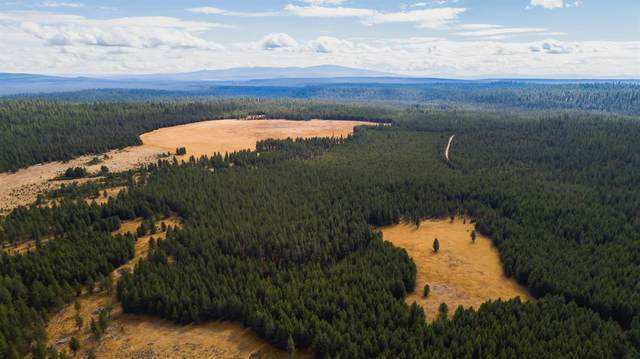 0 Us Forest Service Rd. Nf 2702, Chemult, OR 97638 (MLS #102994967) :: The Payson Group