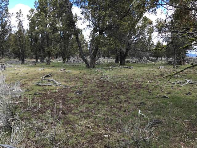 300 Yellow Jacket Springs Road, Beatty, OR 97621 (MLS #103001863) :: The Ladd Group