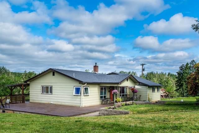 2471 Azalea Drive, Elkton, OR 97436 (MLS #103001935) :: Berkshire Hathaway HomeServices Northwest Real Estate