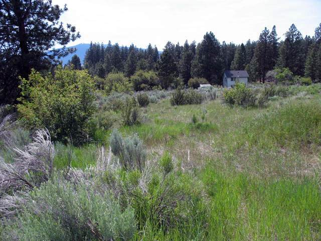 3 Irving Way, Chiloquin, OR 97624 (MLS #103003378) :: Team Birtola | High Desert Realty