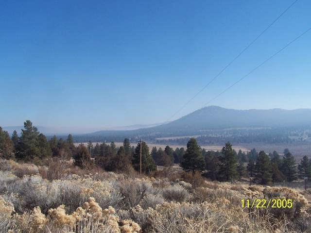 0 Valley View, Beatty, OR 97621 (MLS #103007517) :: Central Oregon Home Pros