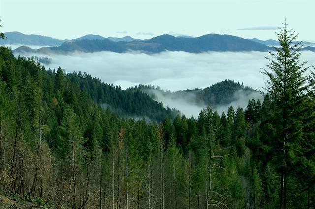 0 34S07W14 TL2700, Wolf Creek, OR 97497 (MLS #103009740) :: Vianet Realty