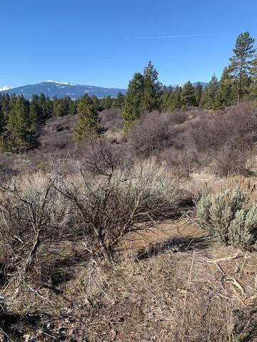 0 Legget Drive, Chiloquin, OR 97624 (MLS #103011090) :: Team Birtola | High Desert Realty