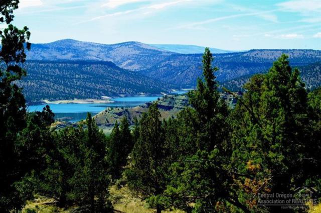 10558 SE Wicasa Lane, Prineville, OR 97754 (MLS #201508915) :: Pam Mayo-Phillips & Brook Havens with Cascade Sotheby's International Realty