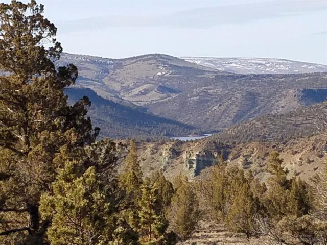 0 SE Pavati Drive Lot 32, Prineville, OR 97754 (MLS #201701763) :: Birtola Garmyn High Desert Realty