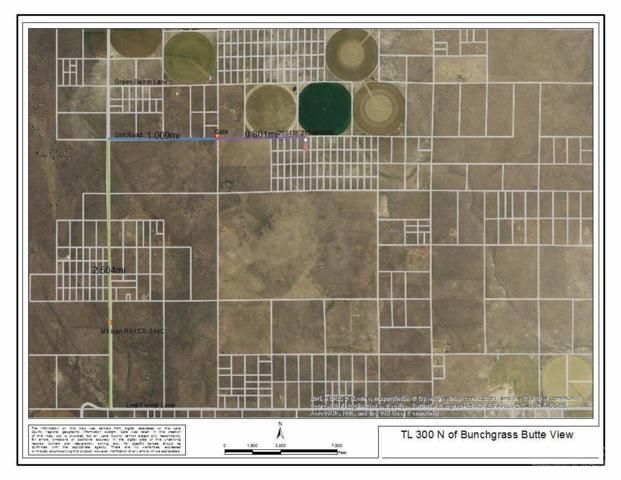 300 No Name Road Tl, Christmas Valley, OR 97641 (MLS #201705503) :: Birtola Garmyn High Desert Realty