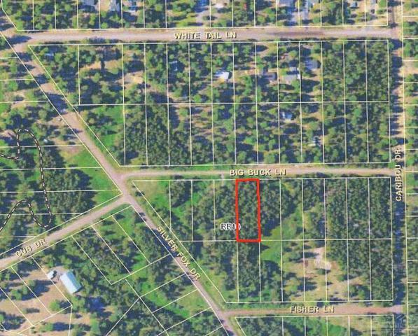 2300 Big Buck Lane Tl, Bend, OR 97707 (MLS #201705713) :: Birtola Garmyn High Desert Realty