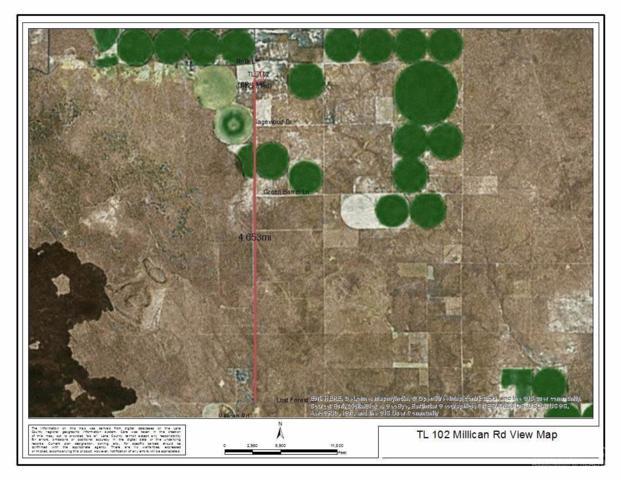 102 Millican Road Tl, Christmas Valley, OR 97641 (MLS #201705735) :: Birtola Garmyn High Desert Realty