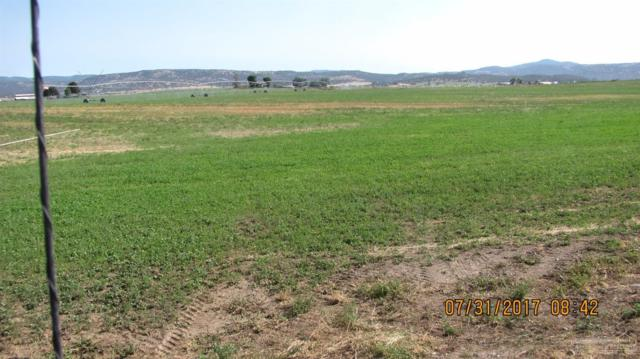 4243 NW Elliott Lane, Prineville, OR 97754 (MLS #201707908) :: Birtola Garmyn High Desert Realty