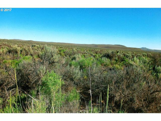 0 Casad, Christmas Valley, OR  (MLS #201710255) :: Birtola Garmyn High Desert Realty