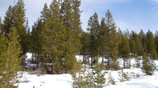 0 National Forest Road 8821, Crescent, OR 32321 (MLS #201801249) :: Pam Mayo-Phillips & Brook Havens with Cascade Sotheby's International Realty