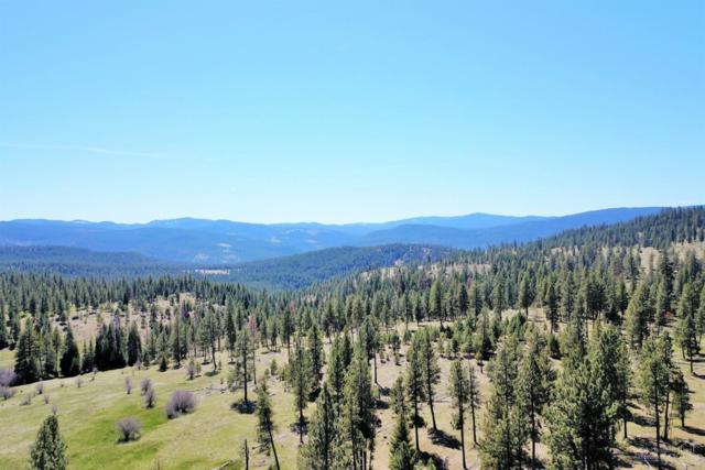0 Elk Creek Road Tl 200, Bates, OR 97817 (MLS #201803967) :: Stellar Realty Northwest