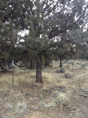 0 SE Umatilla Loop, Prineville, OR 97754 (MLS #201805968) :: Pam Mayo-Phillips & Brook Havens with Cascade Sotheby's International Realty