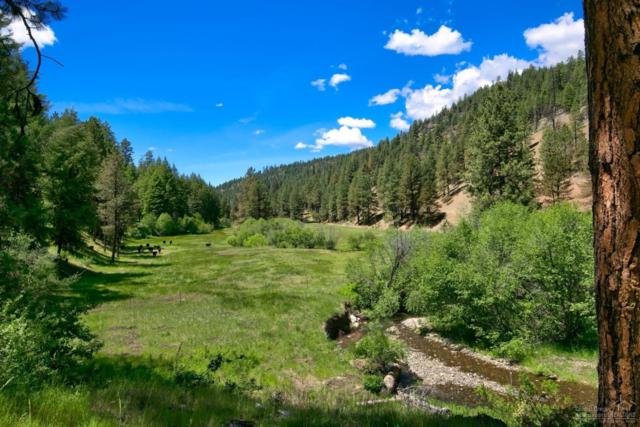 14780 NE Mill Creek Road, Prineville, OR 97754 (MLS #201806291) :: Windermere Central Oregon Real Estate