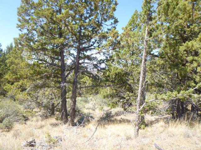 17499 SE Terrible Trail, Prineville, OR 97754 (MLS #201806496) :: Team Birtola | High Desert Realty