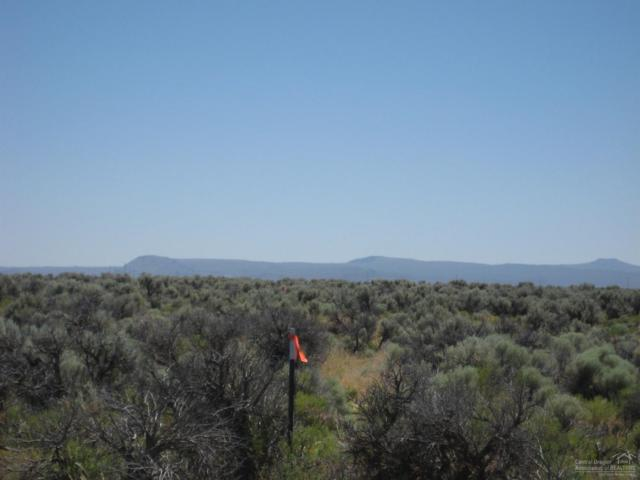800 No Name Rd (Off Rockhouse Rd) #900, Christmas Valley, OR 97641 (MLS #201806826) :: Fred Real Estate Group of Central Oregon